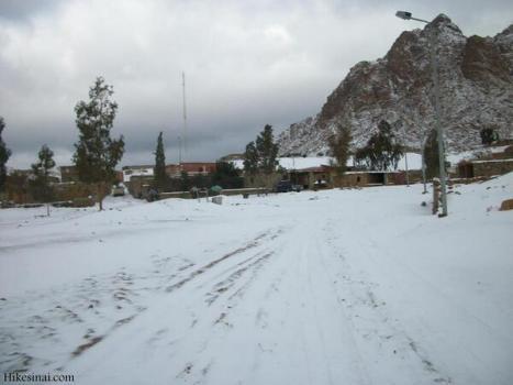 الثلوج تغطى سيناء 2013