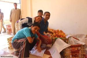 مشاكل خوخ سيناء